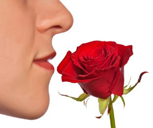 Olfactory testing for TBI Patients